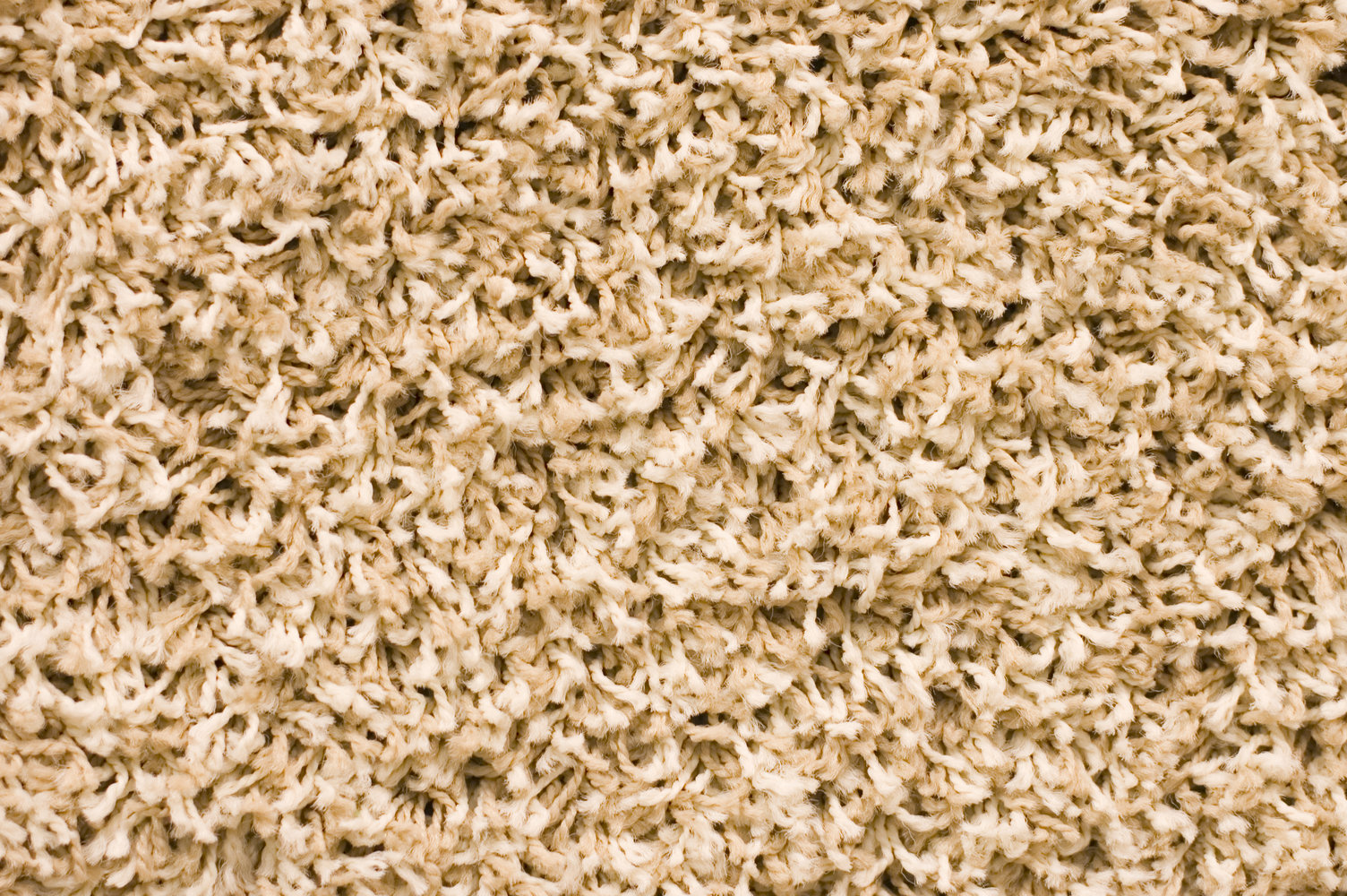 Protect Your Carpet by Keeping These Seven Items and Areas Clean